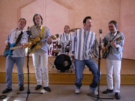Beach Boys Revival Band Image